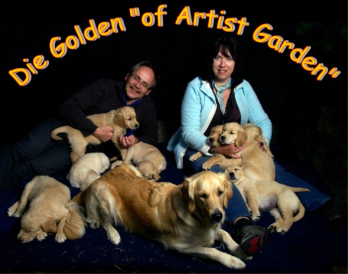 "Die Golden Retriever Zucht ""of Artist Garden"""